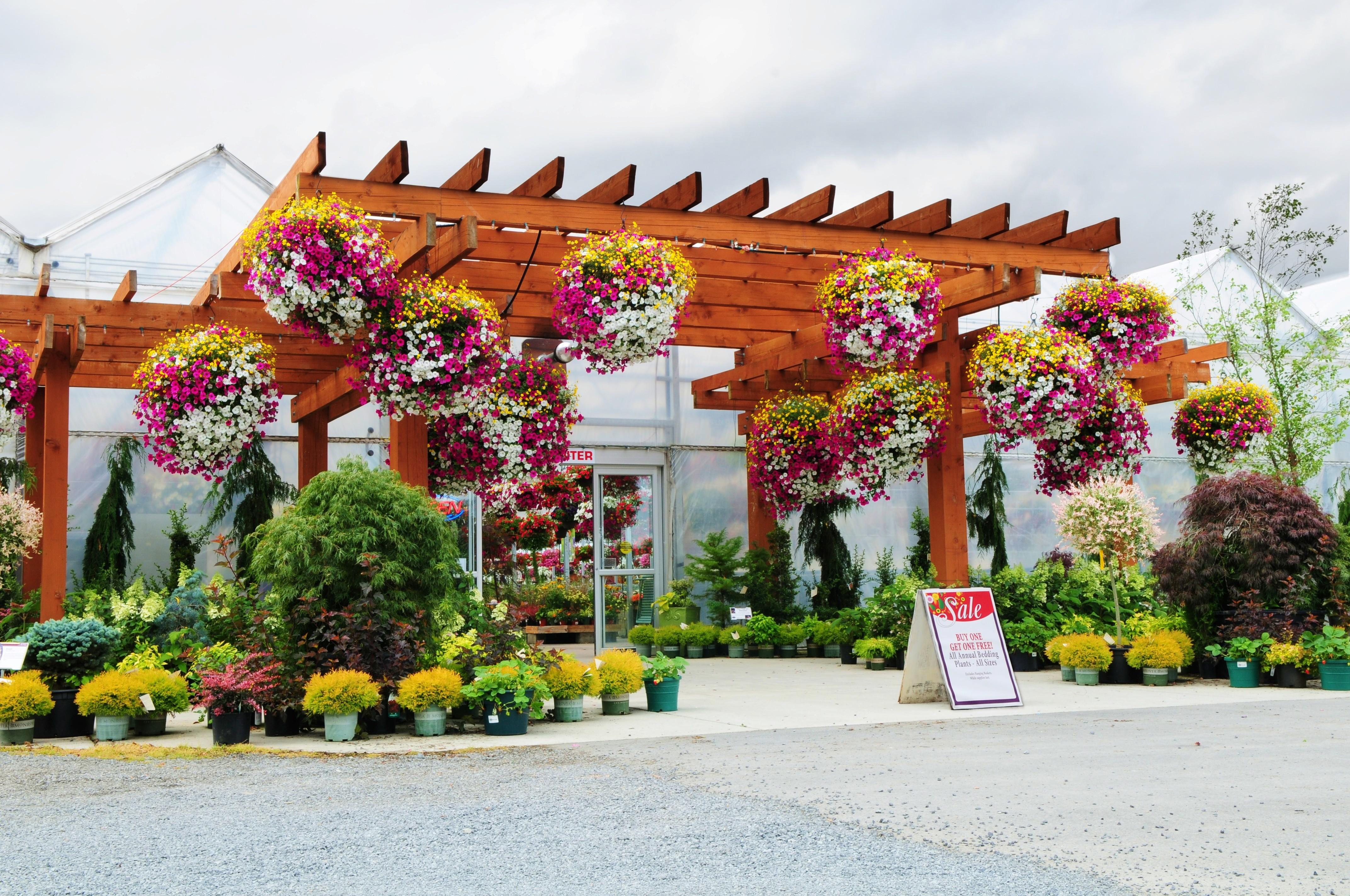About | The Plant Farm