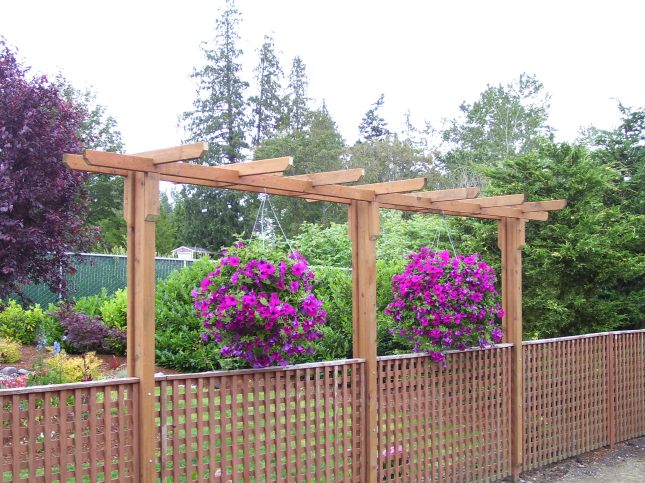 Simple pergola ideas ragged62xlq for Simple pergola ideas